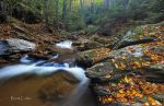 Tucquan Glen,, by Brettc