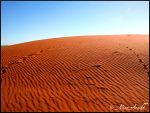 Australia, the Outback by Mithrandiir