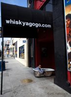 Joey Briggs at The Whiskey by Cyril-Helnwein
