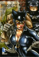 Catwoman / Batman DC Epic Battles Artists Return by RichardCox