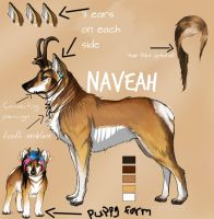 Naveah Reference by RougarCougar