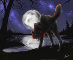 By Night - Commission by KeksWolf