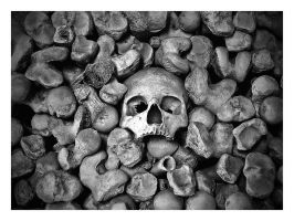 the headbones conected to..... by awjay