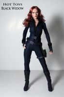 Hot Toys Black Widow by Unicron9