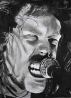 Hetfield-metallica by shinedownster