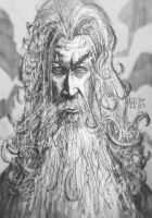 Gandolf the pissed by tomasoverbai