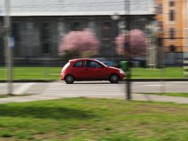 Fist attempt of panning by paully93