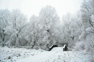 winterland 2 by priesteres-stock
