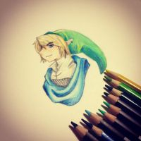 Hyrule Warriors Link by DrawingJacob
