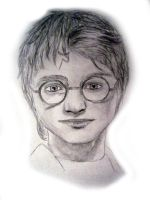 Harry Potter - The 4th Champ by Skymone