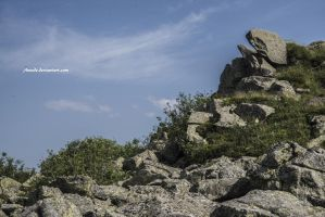 Rocks by Aneede