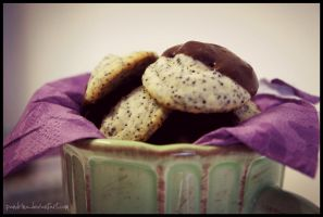 Chocolate-Poppy Cookies by pandrina
