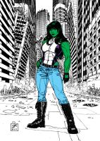 She-Hulk by Steveandrew by Kenkira