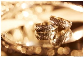 Wedding Rings by Slava-Grebenkin