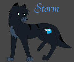 Storm by AquaArtist532