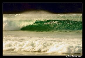 Green Wave by aFeinPhoto-com