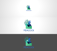Peacock - Cocktail in a box logo concept(For Sale) by DianaGyms