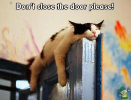 Don't close the door please! by AngieRedondo
