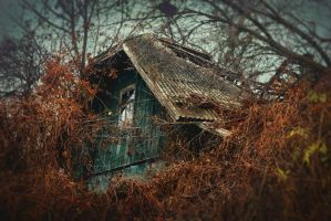 Abandoned house by dammmmit