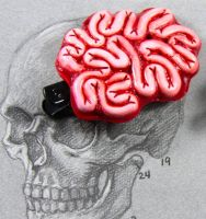 Show your Brains Clip by NeverlandJewelry