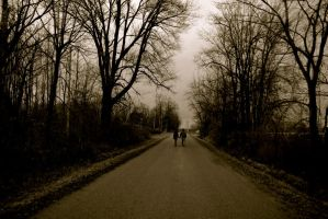 I Will Walk This Road With You by FayetteAethelwyne