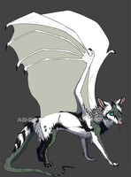 Winged canine adoptable taken by TornTethers