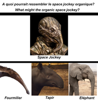Space Jockey - Fourmilier - Tapir - Elephant by VMJML1er