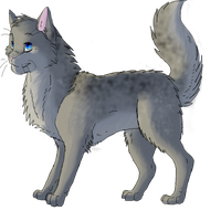 New Ashfur by FireMoon9