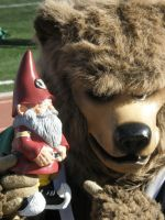 bear and Gnome by sampson1721