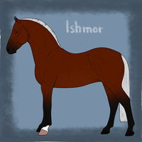 Ishmor Import 25 by RodeoLuvr
