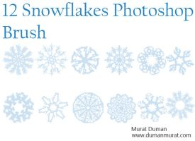 Free snowflakes photoshop brush by DumanMurat
