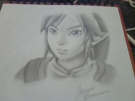 Twilight Princess Link by northernlightsky