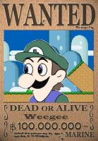Weegee is now WANTED by Dumbass092
