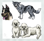 Dog request batch 1 by painted-flamingo