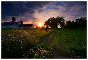 Wisconsin Farm by DobbsPhotography