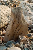 Pebbles Stones and Wood by SweeneyTed