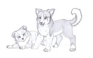 Fenway And Aili Puppies by Tesseri-Shira