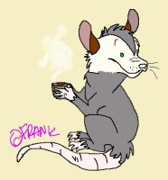 opossum + coffee by diskotanz