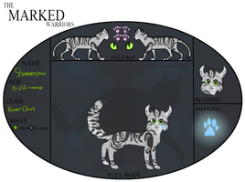 Shimmerpaw Reference Sheet by sshoes
