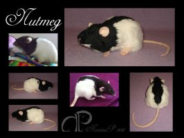 Custom Rat Plushie - Nutmeg by Morumoto