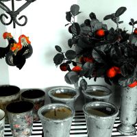 Pots and plants by horstdesign
