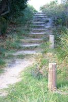 steps up by serp-stock