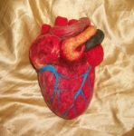 Felted Anatomical Heart by pink-porcupine