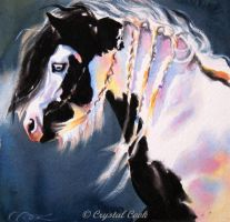 Twilight, Gypsy Vanner horse by crystalcookart