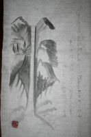 sumi The way of water by Iolii