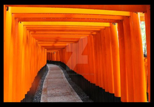 Inari Torii 03 by MellowCandle