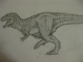 Tyrannosaurus by drgknot