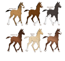 Horse designs for sale :OPEN: by xxLaura