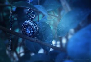 Time is Limited by a-moora-h