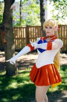 JellyCon 2014 Sailor Venus by Lightning--Baron
